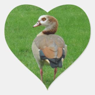 Nice Bird Heart Sticker