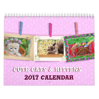 Nice Cats and kittens Calendars