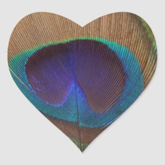 Nice Feather Heart Sticker