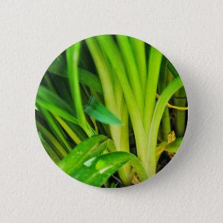 Nice Plants 2 Inch Round Button