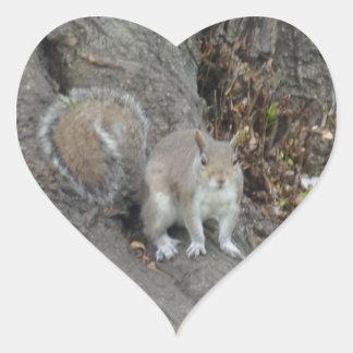 Nice Squirrel Heart Sticker