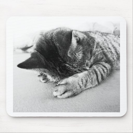nicely cat sleeps on the bed sweetly mouse pad