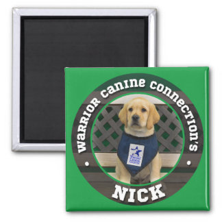 Nick magnet