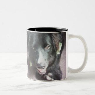 Nicki the Border Collie and Newfoundland Puppie Two-Tone Coffee Mug