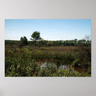 Niepolomice Swampy Marshland Poster