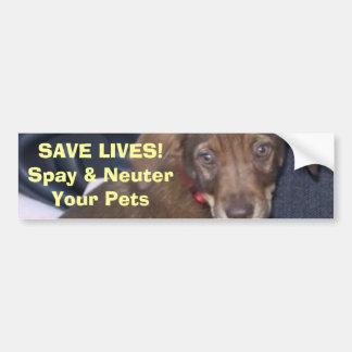 Nigel says:  SAVE LIVES! Spay & NeuterYour Pets Bumper Sticker