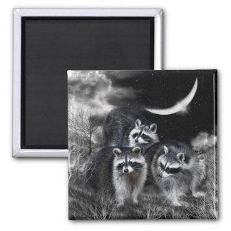 Night Bandits Art Magnet