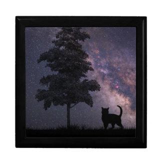 Night Cat Gift Box