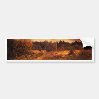 Night Forest and River 3 Bumper Sticker