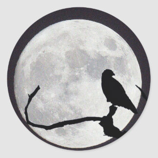 Night Hawk Classic Round Sticker