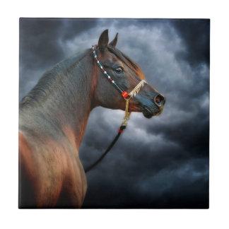 Night Horse Tile