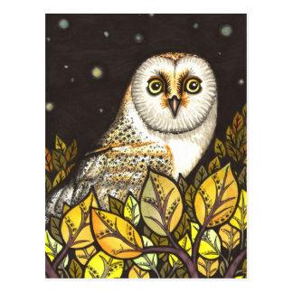 Night is full of wonders - barn owl postcard
