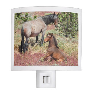 Night light, wildlife, wild horses night lite