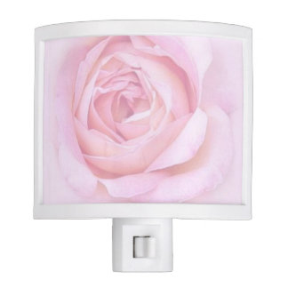 Night Light with Pink Roses
