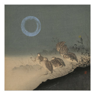 Night of the Quails Poster