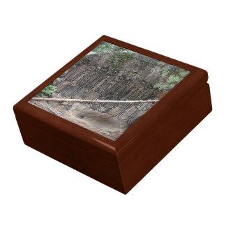 Night of the Walking Gigglers Petroglyph Gift Box
