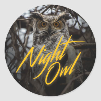 Night Owl - Retro Style Sticker