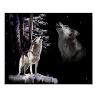 Night scene with Howling Wolf Poster and Print
