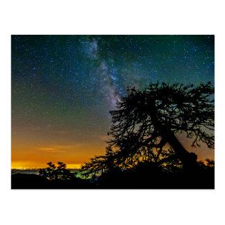Night Sky From Mountain Postcard