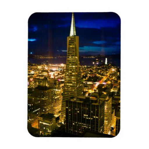 Night view of San Francisco. Vinyl Magnet