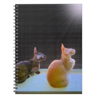 Nightbird Watchers Notebook