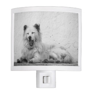 Nightlight - Sleepy White Dog on Santorini, Greece Nite Lite