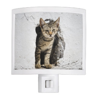 Nightlight with Greek Kitten on Santorini, Greece Nite Lites