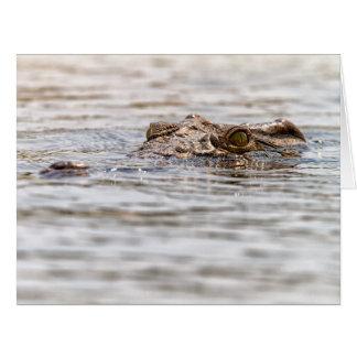 Nile Crocodile Card