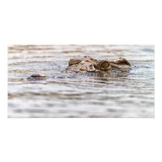 Nile Crocodile Customized Photo Card