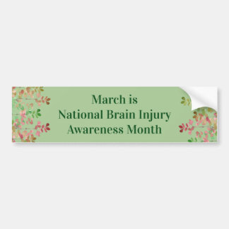 Nile Green Brain Injury Awareness Bumper Sticker