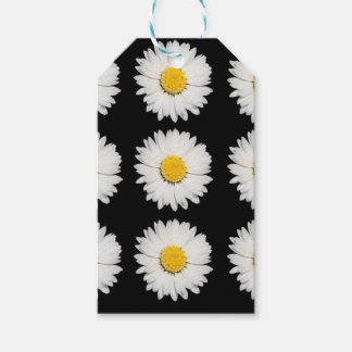 Nine Common Daisies Isolated on A Black Background Gift Tags