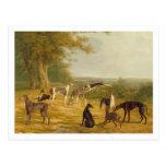 Nine Greyhounds in a Landscape (oil on canvas) Postcard