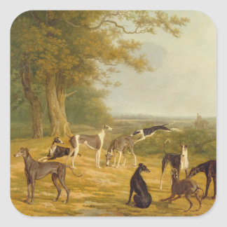 Nine Greyhounds in a Landscape (oil on canvas) Sticker