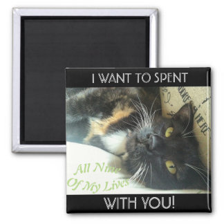 """""""Nine Lives With You"""" Calico Cat Magnet"""