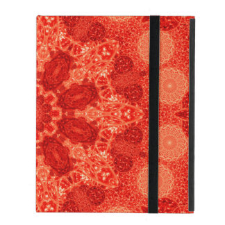 Ninefold Passion Star Mandala iPad Folio Case