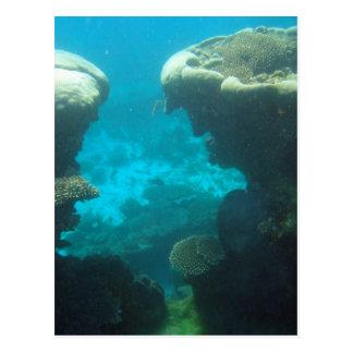 Ningaloo Reef Postcard