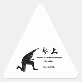 Ninja Triangle Sticker