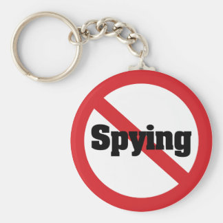 No 1984 Big Brother Spying Basic Round Button Keychain