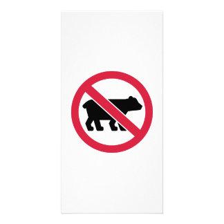 No bears photo card