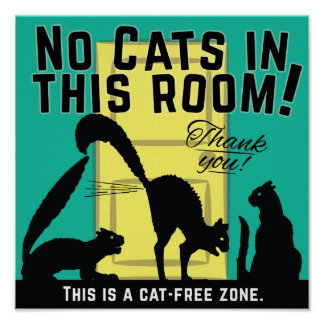'No cats in this room!' poster