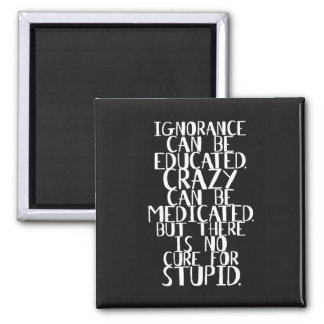 No cure for STUPID - Funny Stupidity Quote Magnet