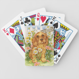 No dogs! bicycle playing cards