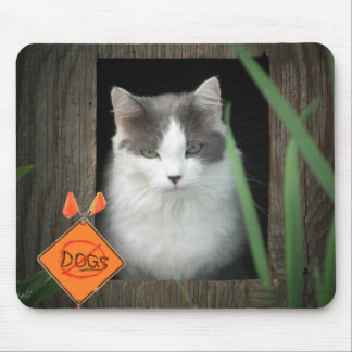 No Dogs Zone  Kitty Mouse Pad