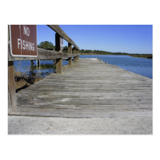 No Fishing Postcard