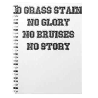 No Grass Stains, No Glory, No Bruises, No Story Notebooks