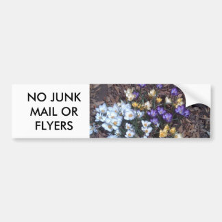 No Junk Mail or Flyers Bumper Sticker