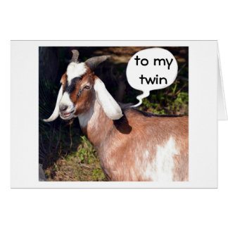 NO KIDDING SAYS GOAT-HAPPY BIRTHDAY TWIN GREETING CARDS