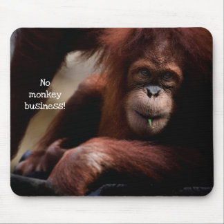 """No Monkey Business!"" Mouse Pad"