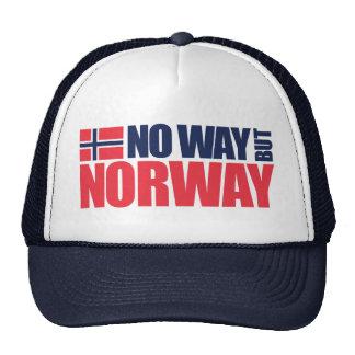 No Way But Norway Hat