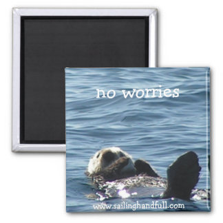 no worries sea otter magnet